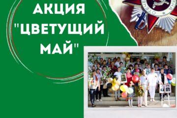 """Акция в честь дня победы """"Цветущий май"""""""